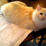 Eli was an enormous help with the transcription :-)